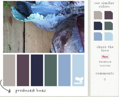 Design seeds - color palette