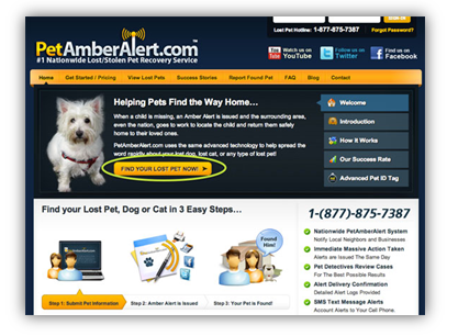 beginner's guide to online paid advertising - pet amber alert