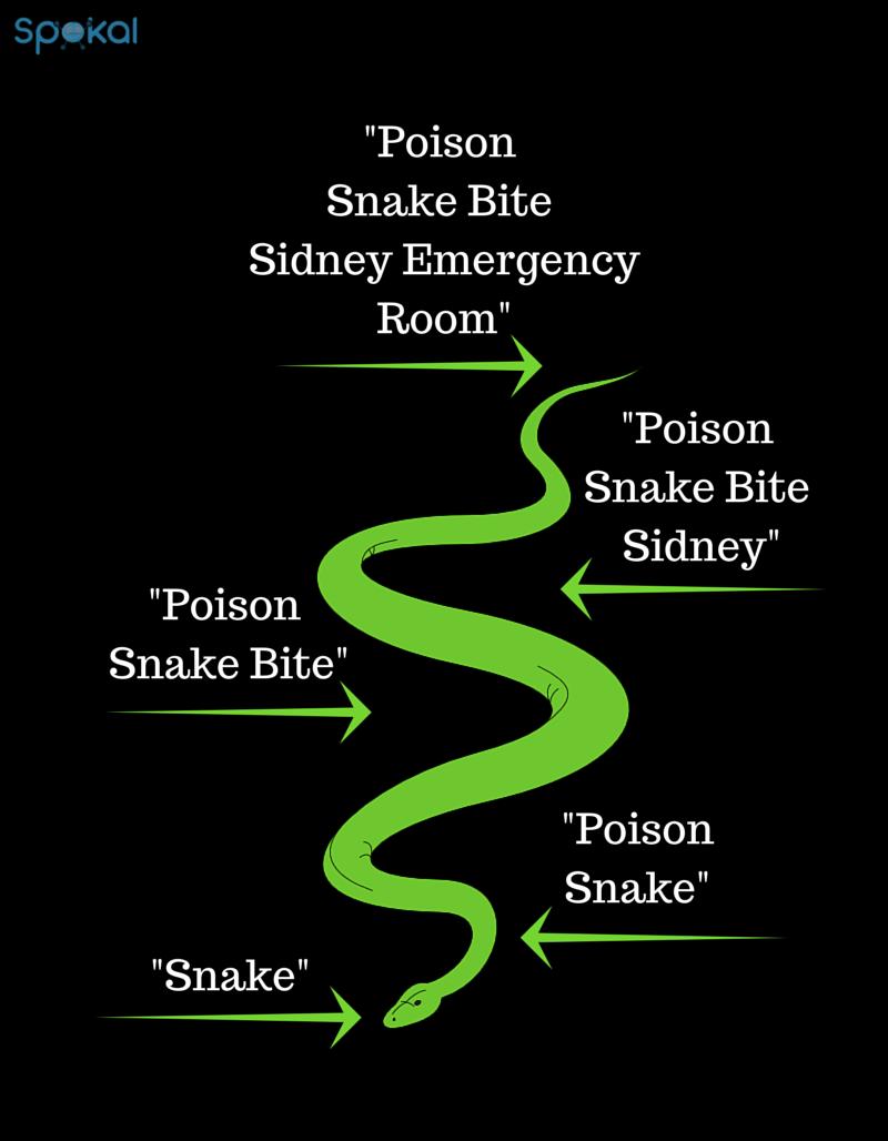 long tail keywords snake bite - spokal's 3 pillars of inbound marketing